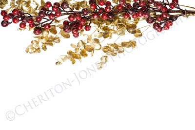Sparkly Red Berries on Golden Leaves Isolated Border