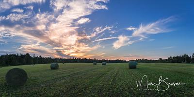 Rural Stittsville