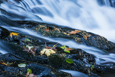"""Multnomah Creek""  Cascades and falls leaves on Multnomah Creek. Taken in the Columbia River Gorge National Scenic Area, Oregon, USA."