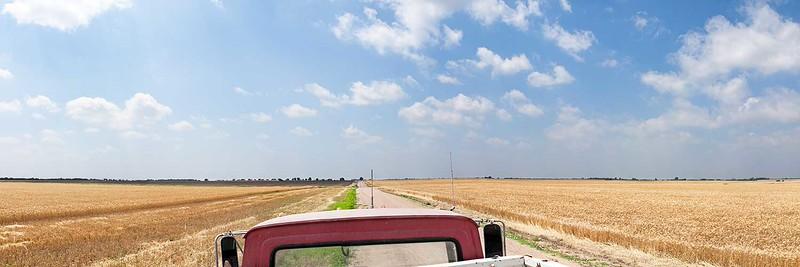 Wheatfield and Farm Truck