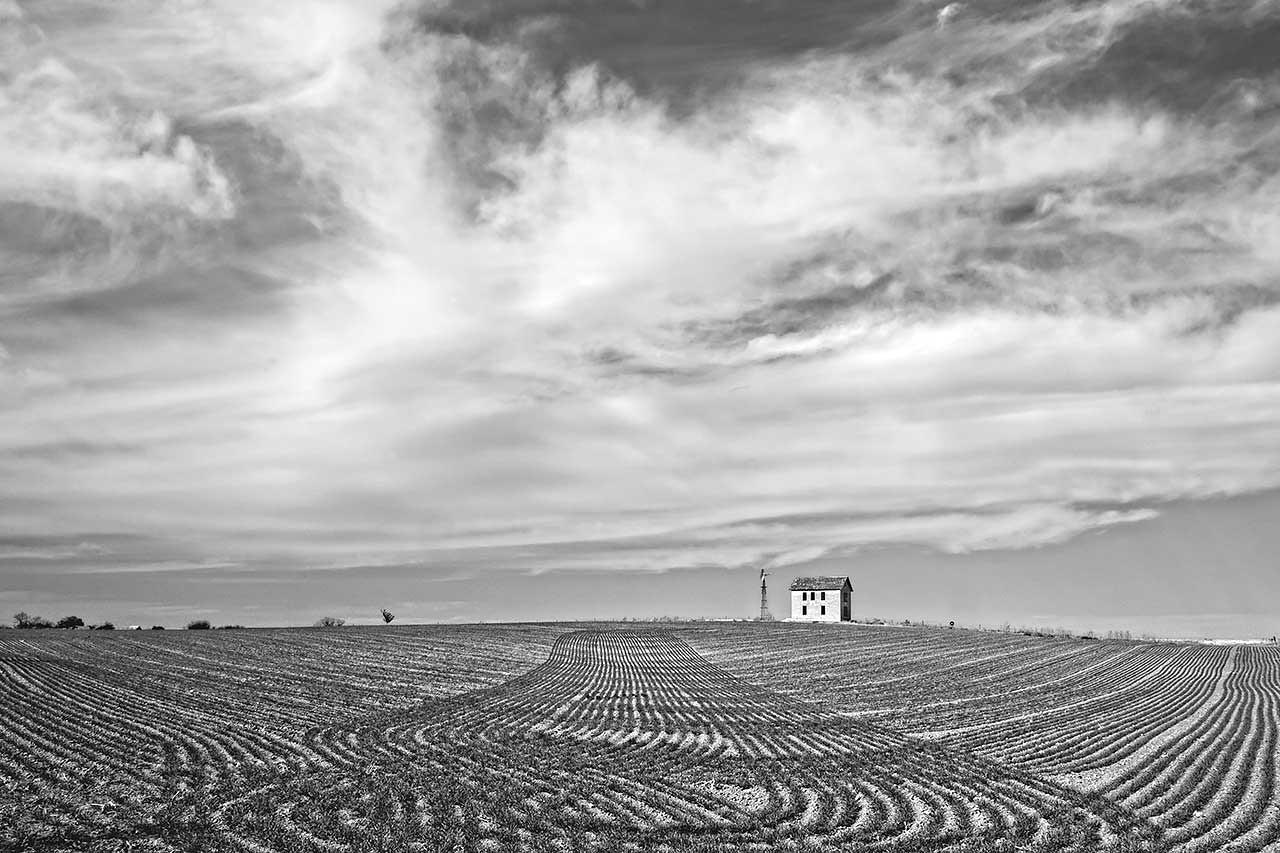 Winter Wheat, Phillips County