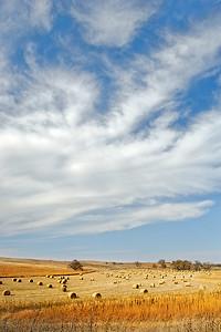 High Plains October, II