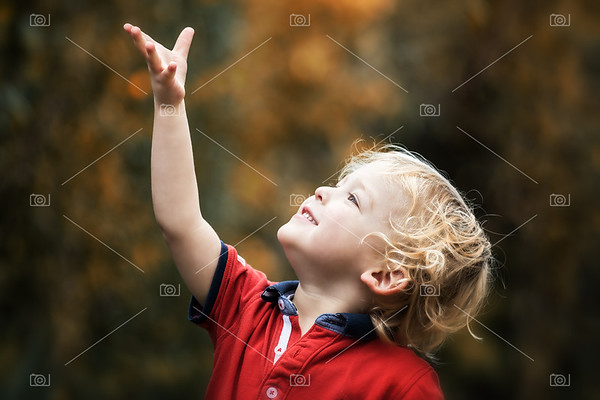 Small child in autumn sunlight