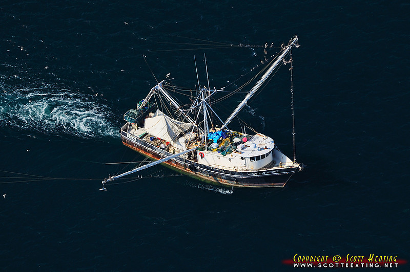 Lady Catherine - off the coast of Flagler County, Florida