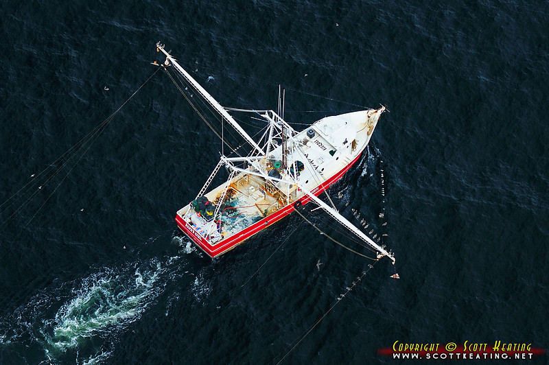 """Papa's Girl"", Shrimp Boat off the Florida coast"