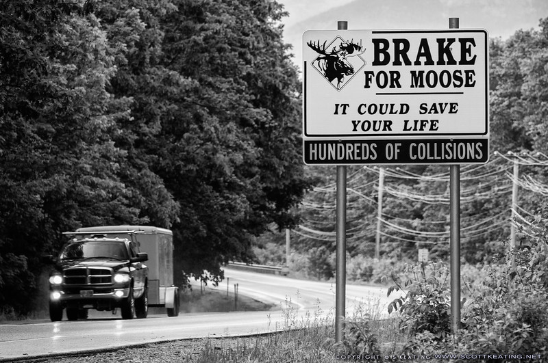 Moose warning sign on the Kancamagus Highway near the Village of Loon Mountain - Lincoln, NH