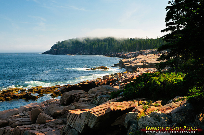 View of Otter Cliff area from Thunder Hole - Acadia National Park, Maine