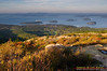 Bar Harbor from Cadillac Mountain - Acadia National Park, Maine