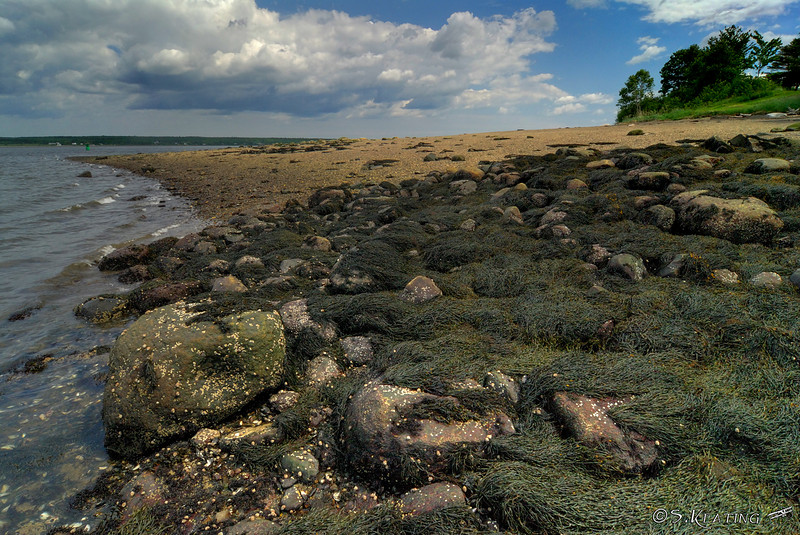 Fort Point State Park on Penobscot Bay - Stockton Springs, Maine