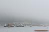 Fog at Seal Harbor, Maine