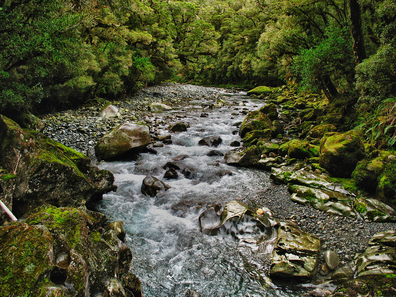 The Chasm Waterfall walk, Fiordlands National Park, New Zealand