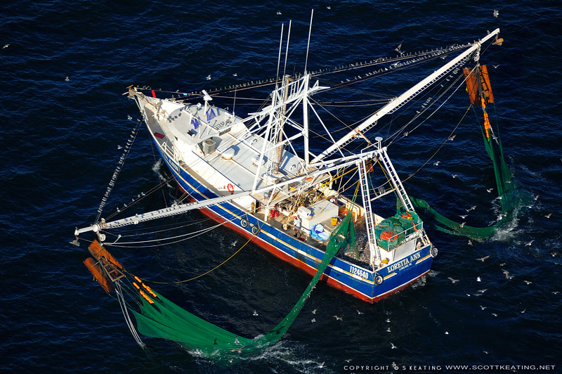The Loretta Ann - 2005<br /> Suitable Sizes: Rectangular formats up to 11x14 and photo puzzles.  When ordering please be aware some sizes will cut off part of the image area.