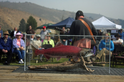 Lonesome Larry, the only sockeye salmon to return to central Idaho in 1992, was featured at the Sawtooth Salmon Festival in Stanley, Idaho, in August 2012.