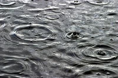 Camas Prairie raindrops.