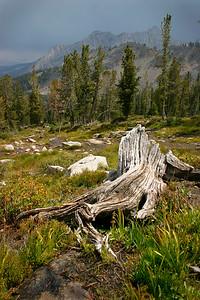 White Cloud Mountains, Idaho.