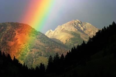Wilson Creek, Pioneer Mountains, Idaho.