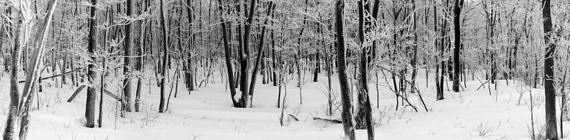 Allegheny Plateau, Pennsylvania.