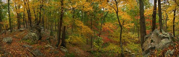 Hunters Rocks, central Pennsylvania.