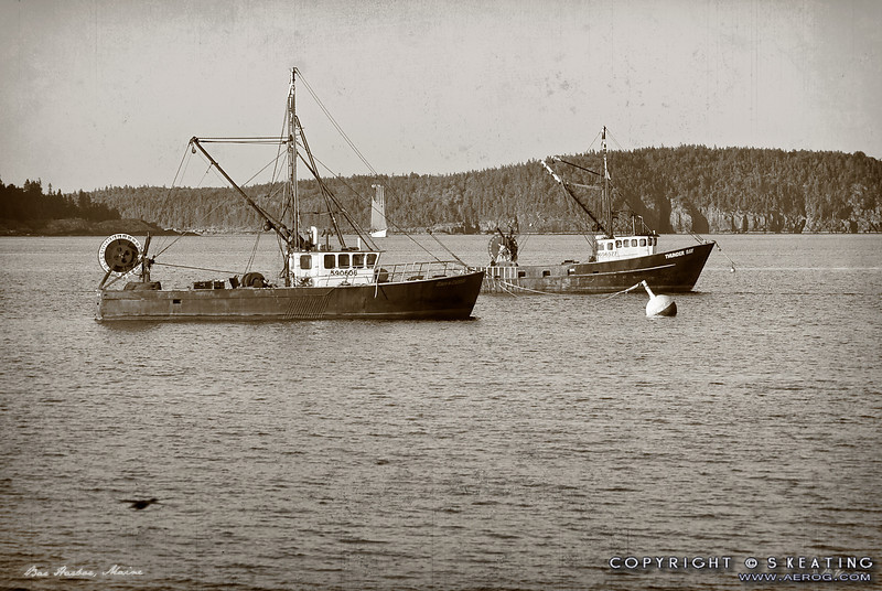 "Fishing Boats - Maine  -- Vintage-Look Suitable Sizes: 4x6, 8x12, 12x18, 16x24, puzzles, and specialty items  Please specify ""true color"" when ordering <i>Note: Vintage lettering along bottom of image remains in prints</i>"