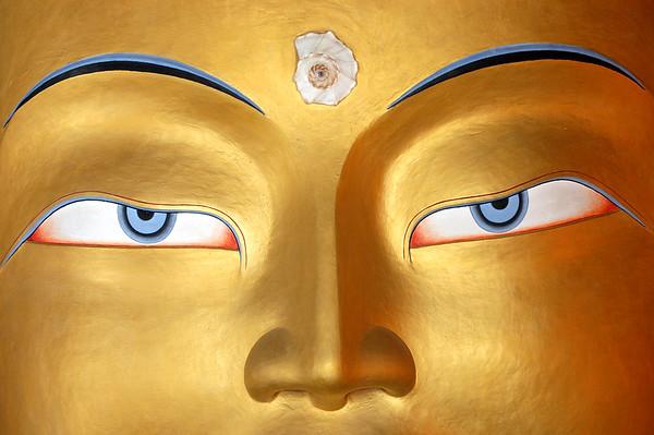 Maitreya's Sight