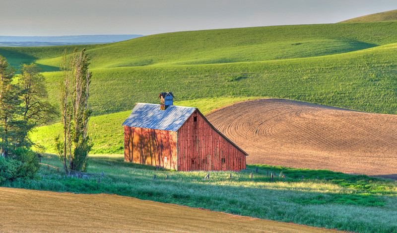A little old Barn in the Palouse region of Washington that needed its picture taken.