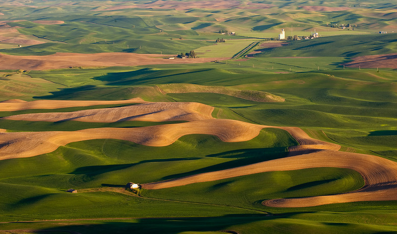 Scene from Steptoe Butte, near Palouse Washington. Image taken at sunrise.