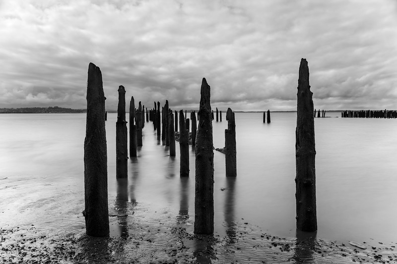 Columbia River pilings near Illwaco, Washington