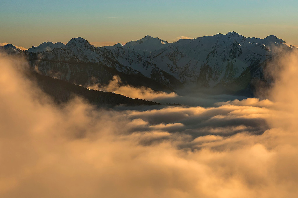 Pre-setting sun lights up the fog, Hurricane Ridge, Olympic NP, Washington