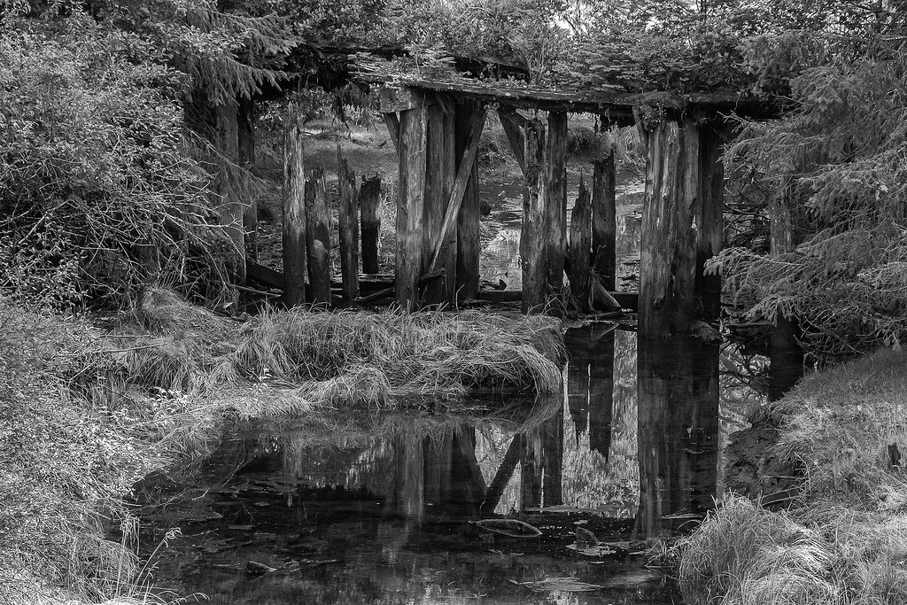 Old bridge near Port Renfrew, Vancouver Island, BC