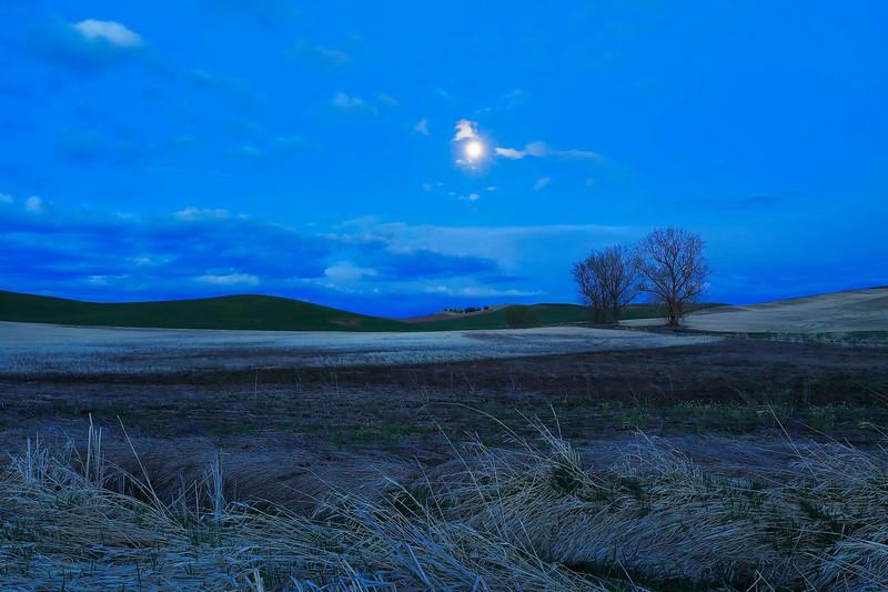 The Palouse hills under the full moon, near Colfax, Washington