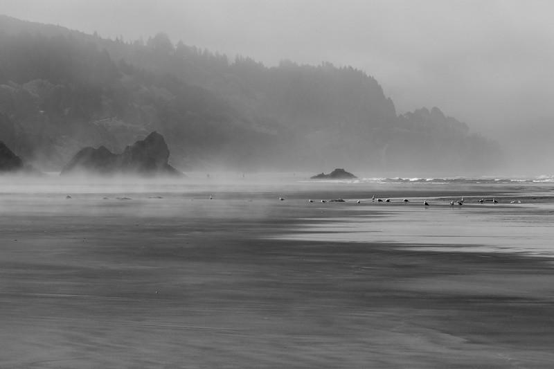 Morning mist, Arcadia Beach State Park, Oregon