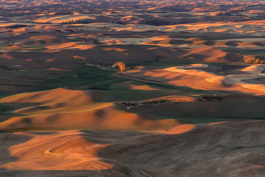 Sunrise on the Palouse, Eastern Washington