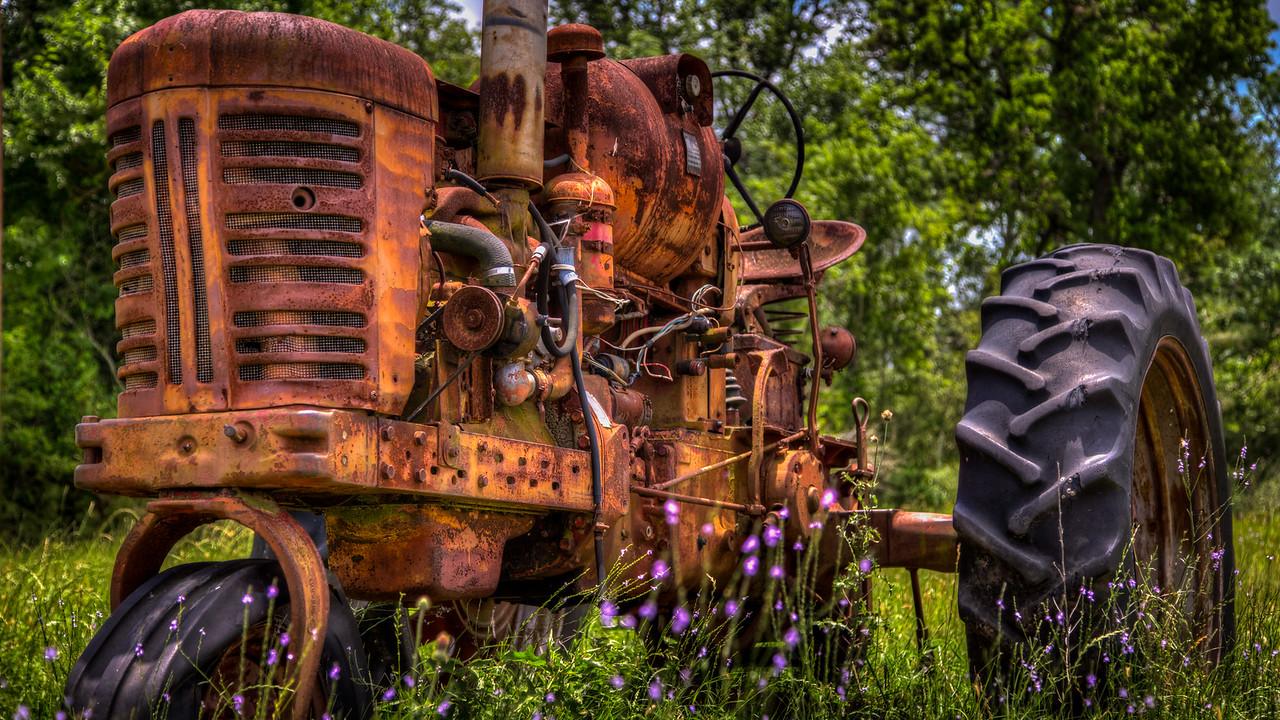 Rusting in the Wildflowers