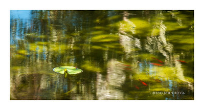 Ruth Bancroft Garden Pond Abstract
