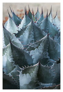 Succulent Abstract 15