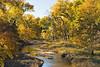 Saline River Autumn