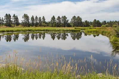 Sunriver Reflection