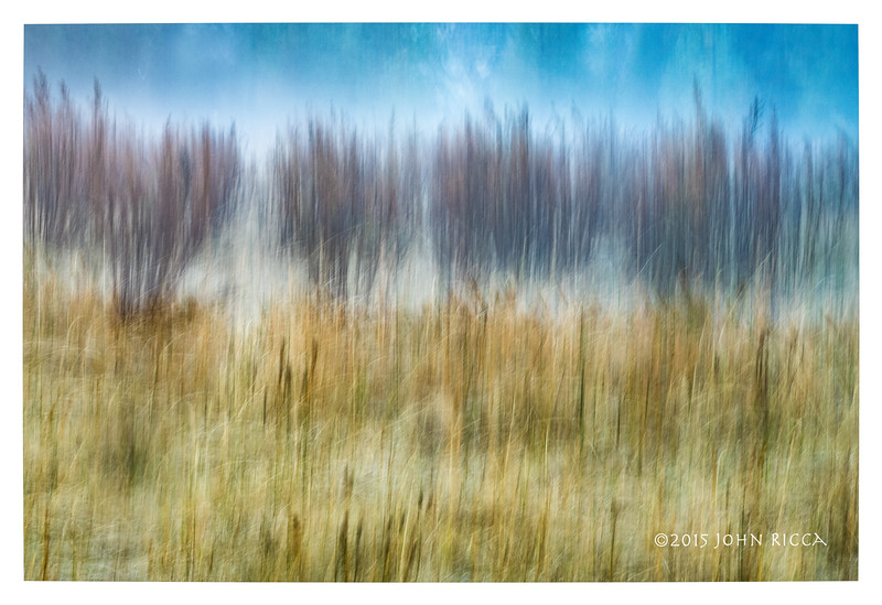 Cook's Meadow Impression 3