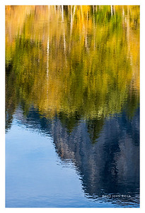 Merced River Reflection 16