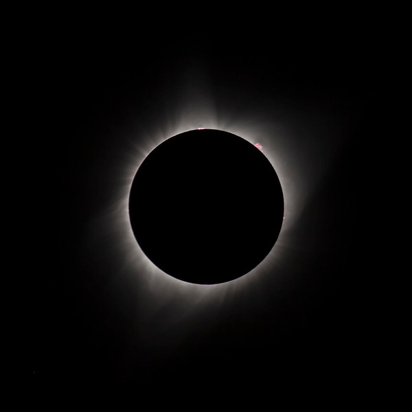 Yes, solar flares.  I read on another post from  a photographer using a lens of twice the focal length of mine (1200mm) that these were reaching upwards of over a hundred thousand miles above the surface  of the sun.  Fast shutter speed cuts down  on the corona allowing for the display of the Prominences.