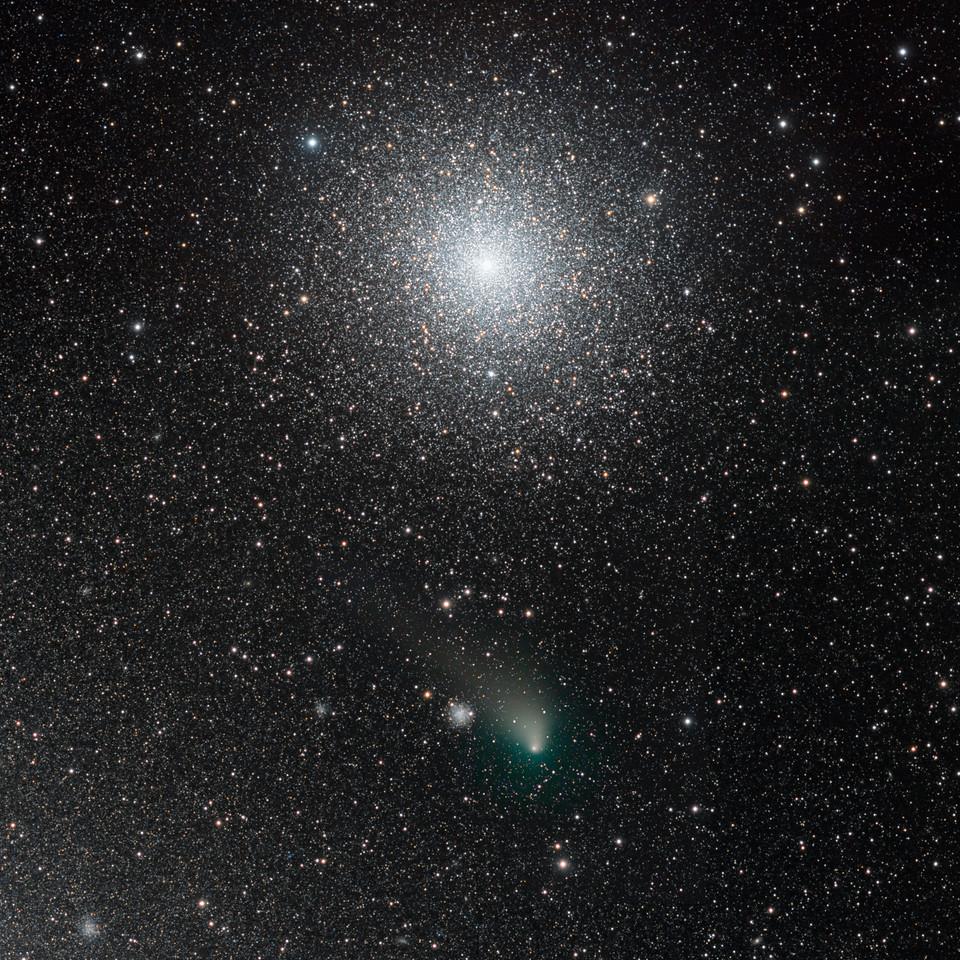 Comet Siding Spring and 47 Tucanae encounter