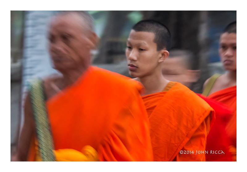 Young Monk At Tak Bat (Alms Giving), Luang Prabang, Laos