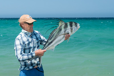 Cabo Roosterfish 2016