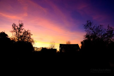 sunset /009922 **