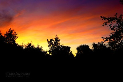 sunset/008264 **