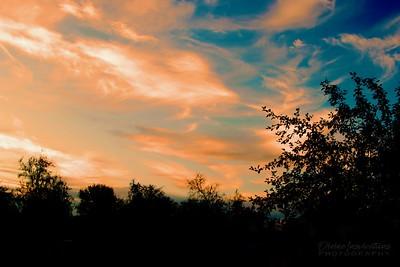 sunset/009966 **