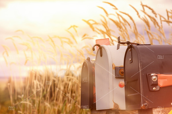 Retro mail boxes against long grass background