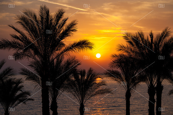 Sunrise, Red Sea