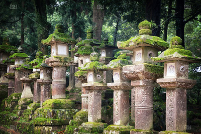 Moss covered lanterns