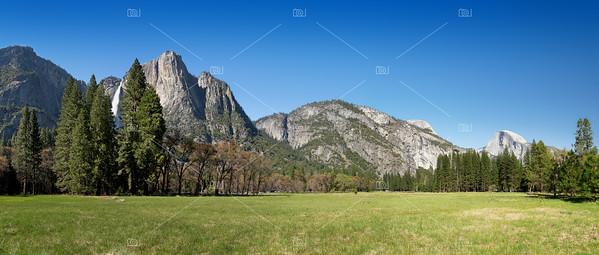 Yosemite Meadow panorama